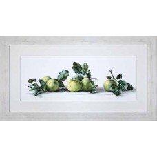 Набір для вишивання хрестиком Luca-S B2259 Натюрморт з яблуками