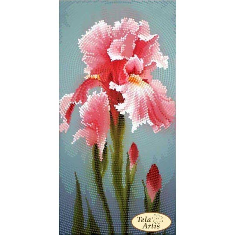Cхема для вишивки бісером Тела Артис ТМ-127 Садові замальовки Рожевий ірис